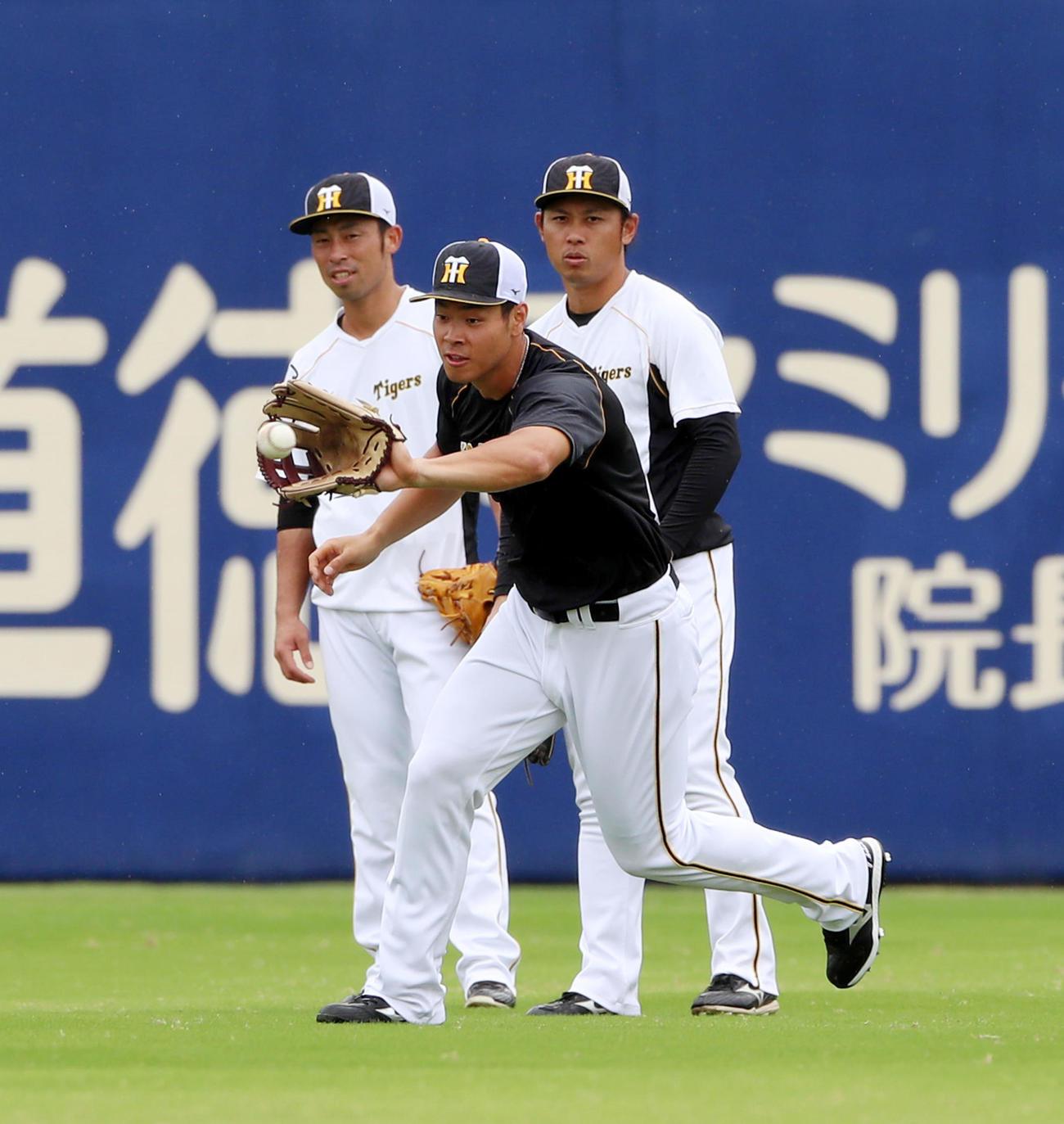 外野でノックを受ける佐藤輝。左は江越、右は高山(2021年9月17日撮影)