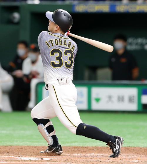 巨人対阪神 7回表阪神1死、糸原は右越え本塁打を放つ(撮影・加藤哉)
