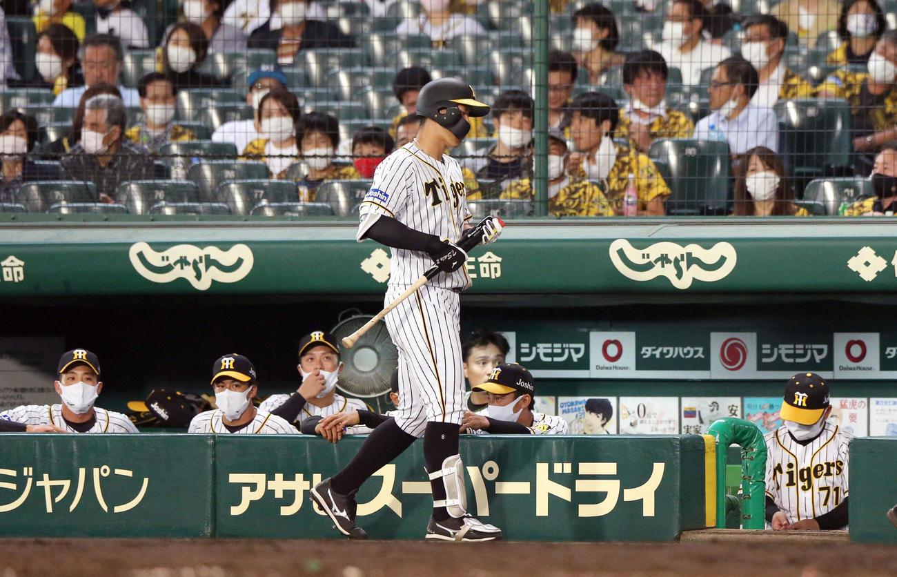 5回裏阪神無死、佐藤輝明は一ゴロに倒れベンチへ引き揚げる(撮影・上山淳一)