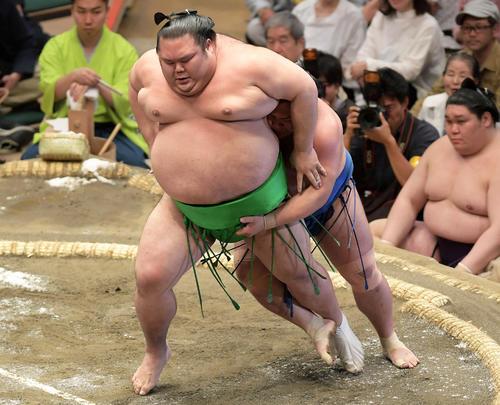 相撲 の 決まり 手