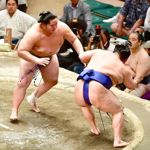 琴鎌谷(左)は押し出しで美ノ海を下す(撮影・小沢裕)