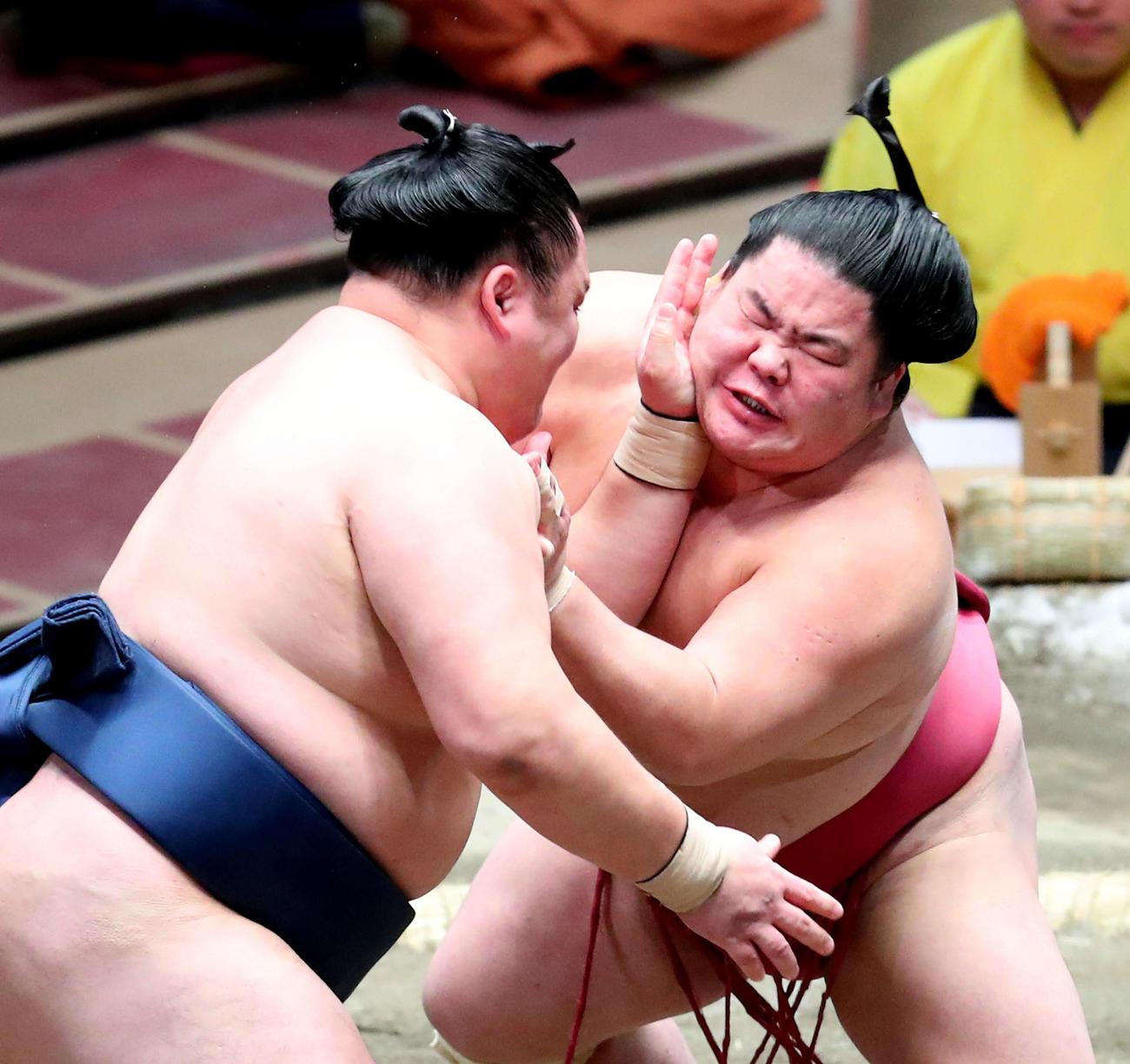 玉鷲(左)の張り手に耐える大栄翔(撮影・河田真司)