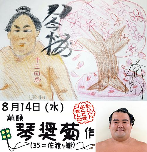 琴奨菊の絵日記
