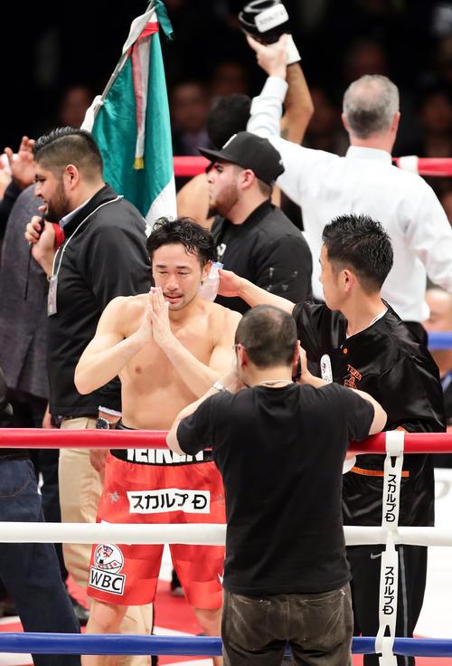 2回KO負けの山中は、喜ぶネリを背に手を合わせて謝る(撮影・浅見桂子)