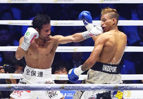 2回、比嘉(左)はロサレスに強烈な左ストレートを見舞う(撮影・足立雅史)