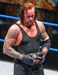 アンダーテイカーが8年ぶりにMSG登場へ WWE - プロレス : 日刊スポーツ