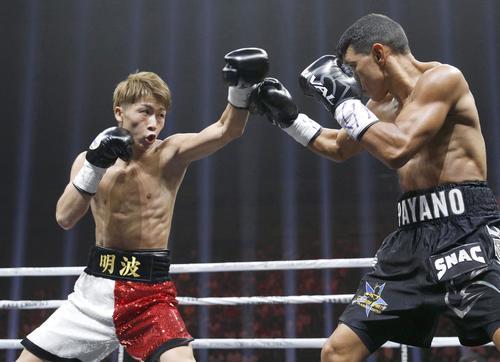 WBAバンタム級世界戦 1回、フアンカルロス・パヤノ(右)を攻める井上尚弥(共同)