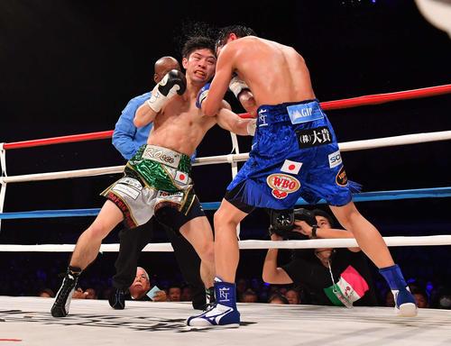 田口良一(右)にボディーブローを打ち込むWBO世界フライ級王者・田中恒成(撮影・上田博志)