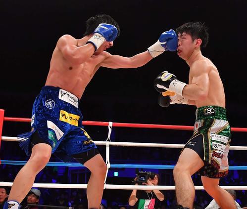 田口良一(左)にジャブをもらうWBO世界フライ級王者・田中恒成(撮影・上田博志)
