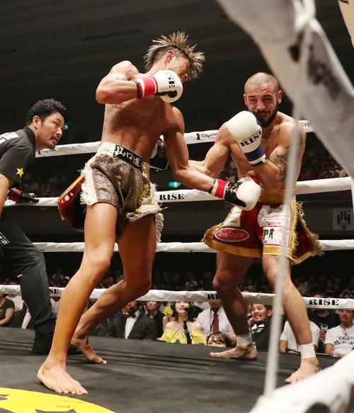 2回、鈴木(左)はロープ際にエマヌエルを追い込みボディを放ってKO勝ちを決める(撮影・加藤哉)