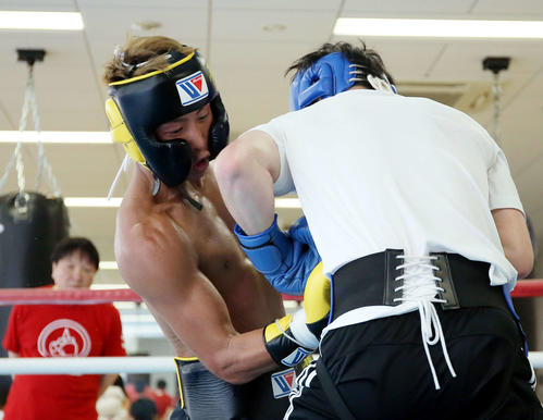 アマチュアボクサーで東京五輪代表候補の森坂(右)とスパーリングを行う井上尚。後方左は大橋会長(撮影・河田真司)