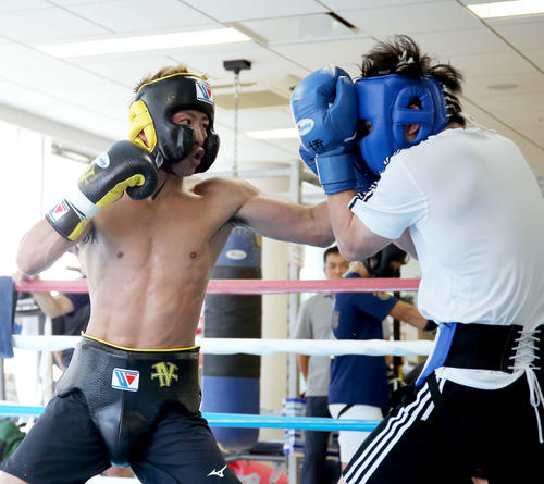 東京五輪代表候補の森坂(右)とスパーリングを行う井上尚(撮影・河田真司)
