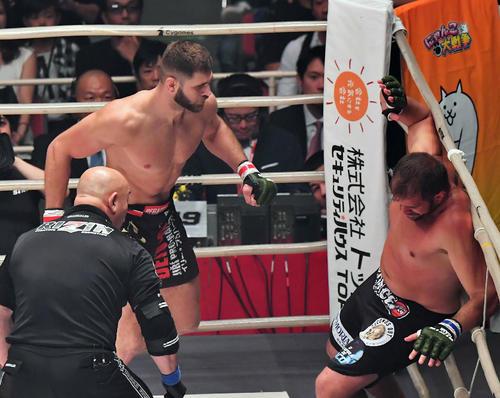 ファビオ・マルドナド(右)をパンチで倒すイリー・プロハースカ(撮影・上田博志)