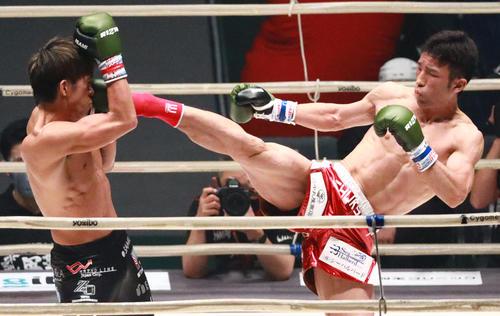 北川(左)にハイキックを浴びせる平塚(撮影・中島郁夫)