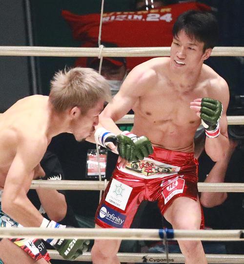 昇侍(左)にKOパンチをぶち込む朝倉海(撮影・中島郁夫)