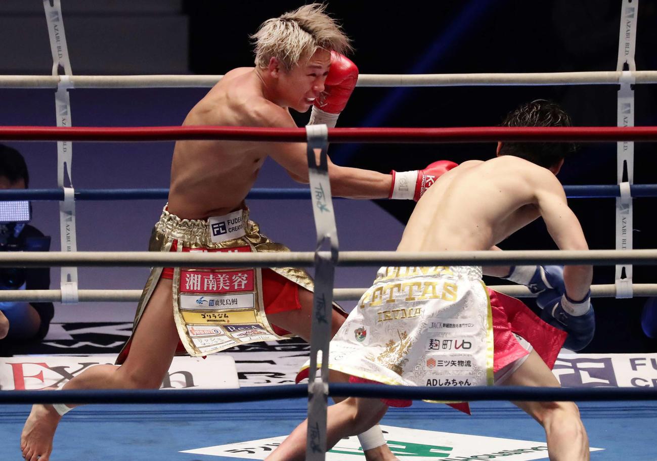 スーパーフェザー級タイトル戦 武尊対レオナ・ペタス 2回、右でダウンを奪う武尊(左)(撮影・丹羽敏通)