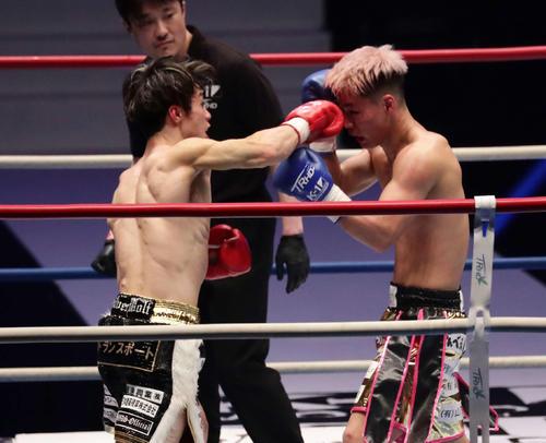 金子晃大対鬼山桃太朗 3回、TKO勝ちした金子晃大(左)(撮影・丹羽敏通)