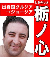 第4回大相撲総選挙