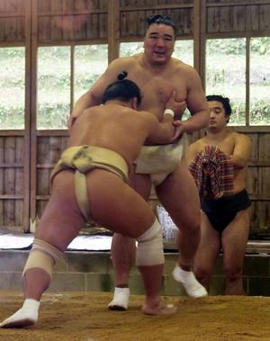 稽古する横綱日馬富士