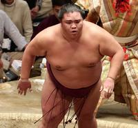 御嶽海「期待に応えたい」我慢して中日勝ち越し王手 - 大相撲 : 日刊スポーツ