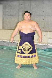 金足農OB豪風4強は「旋風じゃなくてもはや豪風」 - 大相撲 : 日刊スポーツ