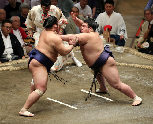 栃煌山(左)に激しく攻める阿武咲(撮影・鈴木正人)
