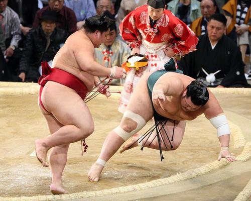 九州場所 豊山(右)に突き落としで勝利した大栄翔(撮影・栗木一考)
