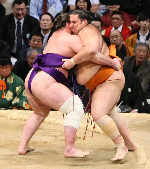 栃ノ心(左)に寄り切りで敗れる魁聖(撮影・栗木一考)