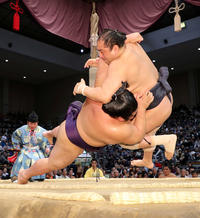 安美錦、してやったり「言いたかったアミだけに」 - 大相撲 : 日刊スポーツ
