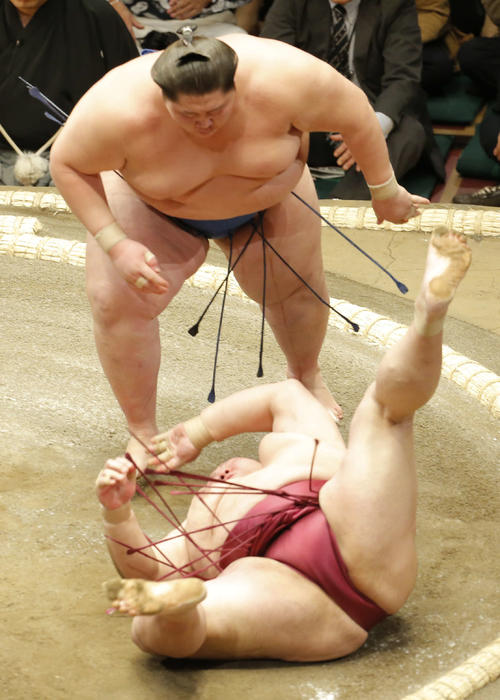 https://www.nikkansports.com/battle/sumo/news/img/201901140000545-w500_0.jpg