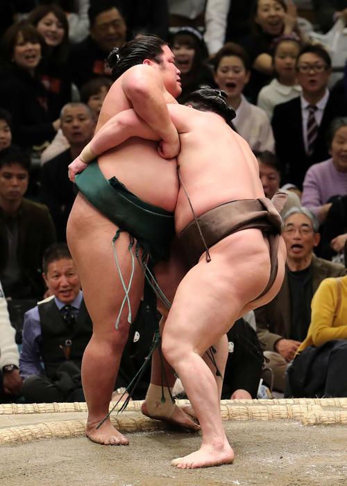 錦木(左)を寄り切りで破る白鵬(撮影・鈴木正人)
