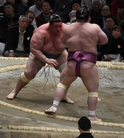 碧山(左)は押し出しで宝富士を破る(撮影・渦原淳)