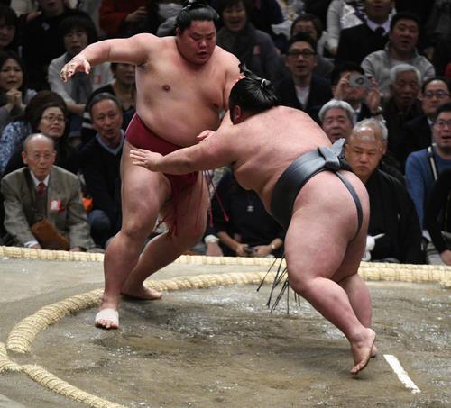 貴景勝は突き出しで大栄翔(左)を破る(撮影・渦原淳)