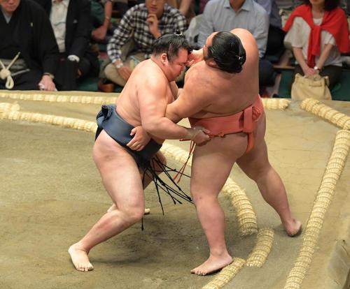 鶴竜(左)は寄り切りで千代大龍を下す(撮影・加藤諒)