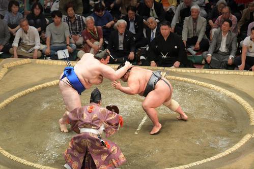 貴景勝(右)ははたき込みで碧山に敗れる(撮影・加藤諒)