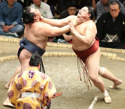 鶴竜(左)の攻めに耐える阿炎(撮影・河田真司)