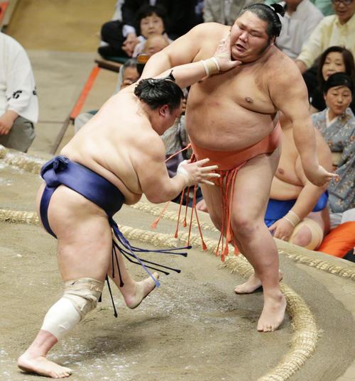 千代大龍(右)を押し出しで下した北勝富士(撮影・中島郁夫)