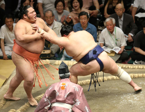 千代大龍(左)を押し出しで破る北勝富士(撮影・河田真司)