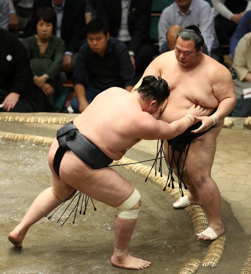 東龍(左)に押し出しで敗れる豊ノ島(撮影・河田真司)