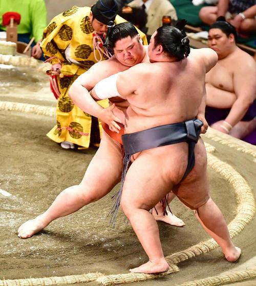 貴源治(左)は徳勝龍を寄り切りで破る(撮影・小沢裕)