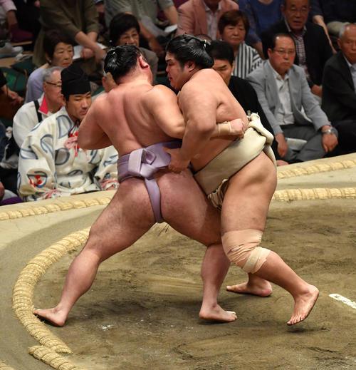 志摩ノ海(右)は琴恵光を寄り切りで破る(撮影・柴田隆二)