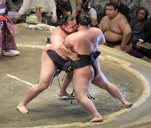 大相撲夏場所千秋楽 鶴竜(左)は寄り切りで豪栄道を下す(撮影・加藤諒)