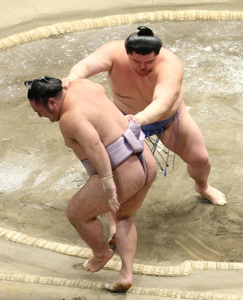 琴恵光(左)を押し出しで破る正代(撮影・河田真司)
