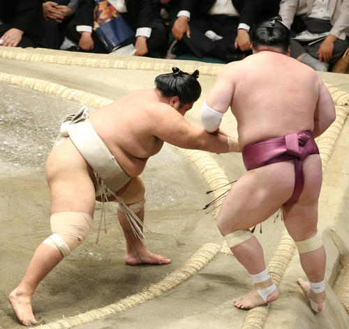 宝富士(右)を押し出しで破る志摩ノ海(撮影・河田真司)