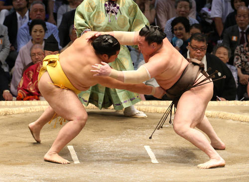 大相撲名古屋場所 遠藤(左)を攻める白鵬(右)(撮影・白石智彦)