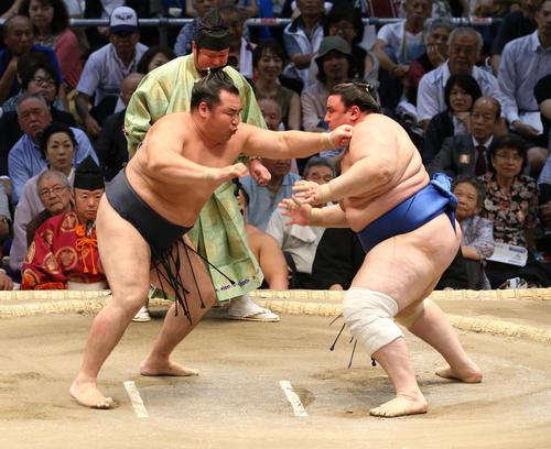 大相撲名古屋場所 碧山(右)を激しく攻める鶴竜(左)(撮影・白石智彦)