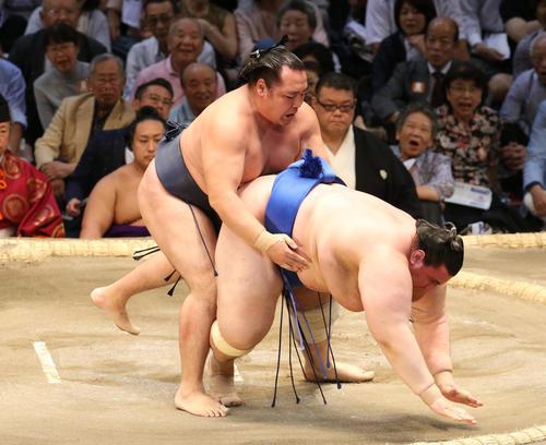 大相撲名古屋場所 碧山(右)を上手出し投げで破る鶴竜(左)(撮影・白石智彦)