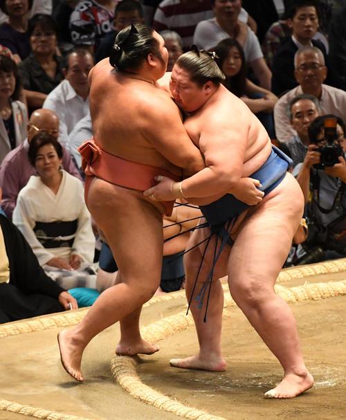 大相撲名古屋場所5日目 逸ノ城(右)は千代大龍を寄り切りで破る(撮影・前岡正明)