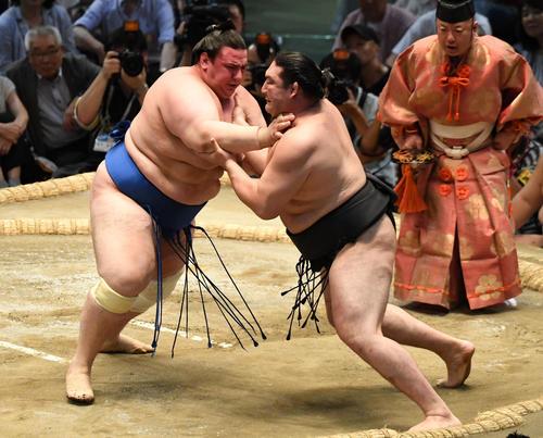 大相撲名古屋場所12日目 碧山が(左)突き出しで竜電に勝利する(撮影・奥田泰也)