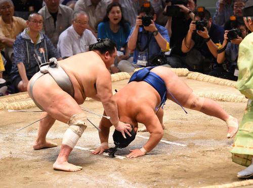 大相撲名古屋場所14日目 北勝富士(左)に突き落としで敗れる照強(右)(撮影・森本幸一)